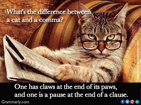 Difference between a cat and a comma